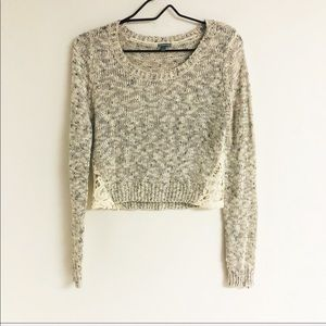Charolette Russe Beige Speckled Cropped Sweater